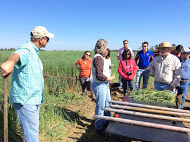Cover crop meeting